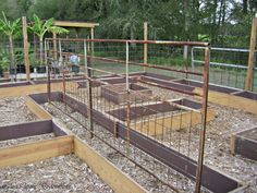 Great repurposing! Salvaged wood is used for raised garden beds, with an old gate as a trellis.