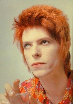 """zimtrim: """"David Bowie """""""