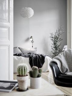 Black and white bedroom with modern light fixture, cozy gray bedding, indoor plants, and cacti