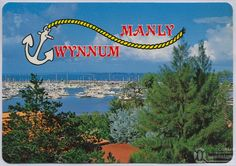 """<span class=""""caption-caption"""">Wynnum - Manly</span>, c1970-2000. <br />Postcard, collection of <span class=""""caption-contributor"""">Murray Views Collection</span>. Aboriginal Words, Brisbane River, Sunshine State, Great Memories, Growing Up, Coastal, Places To Visit, Australia, Neon Signs"""