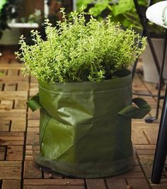 Join the urban gardening movement! Grow herbs in bags | live from IKEA FAMILY