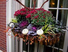 Lovely fall window box