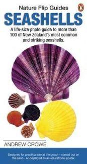 The fold out poster is perfect for laying on the beach and positioning the seashells you find on the beach next to the lifesize photos for comparison. Easy to use and allows for comparison of the variety of molluscs found on the NZ shores. Laying On The Beach, Most Common, Seashells, New Zealand, The 100, Life, Easy, Poster, Photos