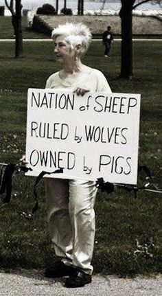 Nation of Sheep ~ Ran by Wolves - Owned by Pigs #UniteBlue