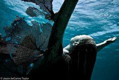 deniz-altinda-heykel-siralio-26