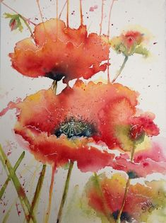Watercolor paintings for beginners. Watercolor Poppies, Watercolor Cards, Watercolor Landscape, Abstract Watercolor, Watercolour Painting, Watercolours, Poppies Art, Watercolor Paintings For Beginners, Drawn Art