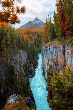 Autumn Photography, Landscape Photography, Travel Photography, Fauna, Solo Travel, Nature Pictures, Beautiful Landscapes, The Great Outdoors, Adventure Travel