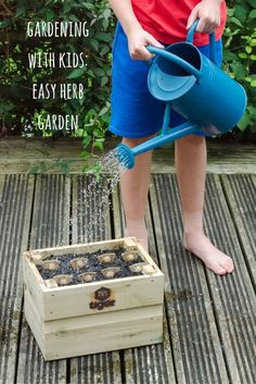 Our Grow Along project with Tiger Sheds, planting a container herb garden…