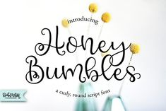 Honey Bumbles, a curly round script by Rachel White Art on @creativemarket