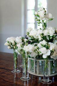 So elegant - White roses