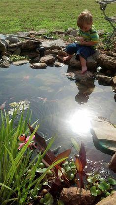 backyard pond photo--from DIY Water Gardening on FB