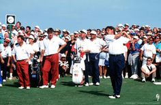 By Bob Thomas Bob Thomas Sports Photography Getty Images  Sport, Golf, The Ryder Cup, Kiawah Island, South Carolina, September 1991, USA 14 1/2 v Europe 13 1/2, USA's Fred Couples hits a tee shot watched by playing partner Ray Floyd and European opponents Ian Woosnam and Nick Faldo.