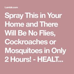 Spray This in Your Home and There Will Be No Flies, Cockroaches or Mosquitoes in Only 2 Hours! - HEALTH DIET FITNESS