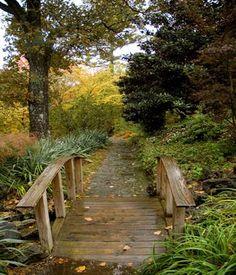 beautiful little bridge