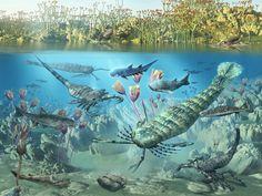 Siluriano terzo periodo del Paleozoico.  In foto: Pterygotus, Acantode, Brontoscorpio e Bothriolephis.