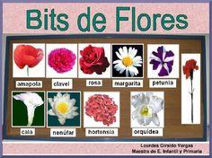 Bits Inteligencia Las Flores Por Logiva by Lourdes Giraldo via slideshare