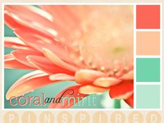 This is the exact color palette I'm thinking of for a beach wedding!