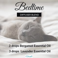 Bedtime Diffuser Blend 3 drops Bergamot Essential Oil 3 drops Lavender Essential Oil Organic Essential Oils, Essential Oil Uses, Drop, Diffuser Blends, Bergamot, Bedtime, Saving Money, Essentials, Pure Products