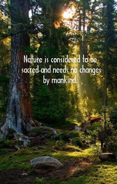 *Sacred Natural Beauty*  LET IT BE- FREE! <3