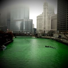 At Patrick's day Chicago il