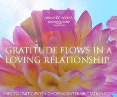 Welcome to Day 10 – Gratitude Expands Every Relationship  Join us and watch as your relationships blossom!