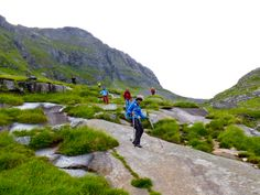 Here you see the norwegian hiking trails, we recommend poles and proper hiking shoes. Lofoten, Hiking Shoes, Hiking Trails, Norway, Golf Courses, Mountains, Nature, Travel, Beautiful
