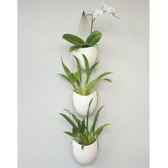 Porcelain Hanging Planters (Set of 3) | Urbilis.com | http://www.urbilis.com/hanging-porcelain-planter-set-of-3-natural/