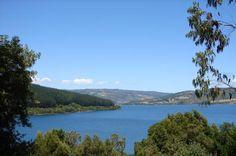 """Lago Lleu Lleu : """"Lago Lleu-Lleu:     Ubicación  Se ocaliza 43 kilómetros al sur de Cañete y a 14 kms. al suroeste de Contulmo, en la VIII Región del Bío-Bío     Ubicado en plena cordillera de Nahuelbuta, a este solitario lago de borde acantilado, se le considera el lago más puro de América Latina, sus aguas son apacibles y está comunicado con el mar.     Ojalá les sirvan de algo las fotos. Este lago es realmente precioso"""