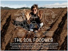 We're sharing Dr. Elaine Ingham, who is the Founder, President and Director of Research for Soil Food Web Inc., a business built on uncovering the beautiful biology of our #soil. Through answering the fundamental questions of which organisms are present in our soil and whether they benefit or harm the surrounding plants, Elaine discovers how to grow the best quality food and foliage at the least expense, and how to maintain optimal soil fertility. She has spent numerous years studying the…