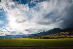 😲 Grassland Grass Landscape - get this free picture at Avopix.com    📷 https://avopix.com/photo/12112-grassland-grass-landscape    #grassland #grass #landscape #field #rural #avopix #free #photos #public #domain