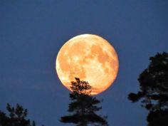 Great full moon | Jussi Jalkanen, Helsinki /yle.fi
