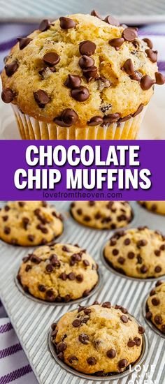 Bakery style chocolate chip muffins! These are excellent, easy to make, great flavor. Perfect for a grab and go breakfast or snack, also delicious for brunch. #chocolatechipmuffs #chocolatechip #muffins #baking #recipes #bread #lftorecipes