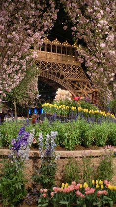The theme: Springtime in Paris, Philadelphia flower show