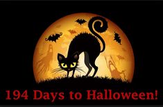 Retro Halloween, Halloween Fun Facts, Fröhliches Halloween, Feliz Halloween, Halloween Pictures, Halloween Cards, Holidays Halloween, Halloween Decorations, Halloween Treats