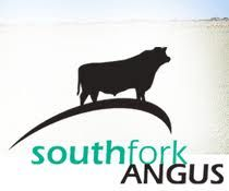 Google Image Result for http://www.southforkangus.com.au/images/South-fork-Angus-logo.gif