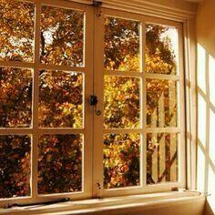 Lovely autumn. .~ starla ~