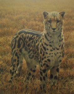Robert Bateman King Cheetah