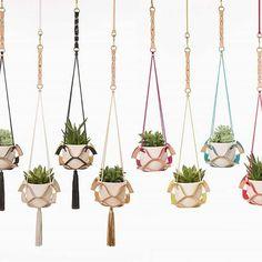 Tassel and Colour Pop Plant Hangers. #kathrynleahpayne #planthanger…