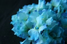OVER 30 Soft Silk Hydrangea Blossoms in Turquoise by simplyserra, $4.25