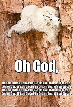 Oh God funny memes god meme funny quote funny quotes humor humor quotes funny pictures