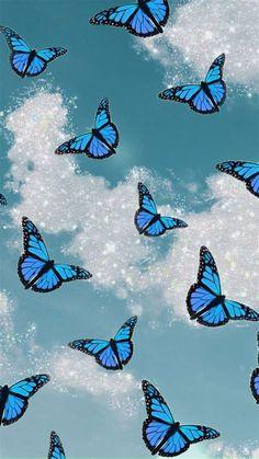 Blue Butterfly Wallpaper In 2020 | Butterfly Wallpaper