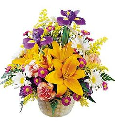 Spring Blossoms This basket displays the bright colours of nature. It includes lilies, iris, daisies, mini carnations and yellow solidago. The come arranged in this classic handled basket. #flowers #weeklyflowers #weekly #flowers #lilies #yellow #spring #basket
