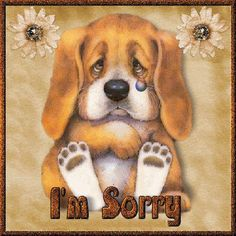 Sorry Puppy picture Apology Quotes For Him, Forgiveness Quotes, Sorry Images, Apologizing Quotes, Sorry Quotes, Friends Gif, Picture Sharing, Im Sorry, For Facebook