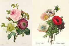 floral bouqets