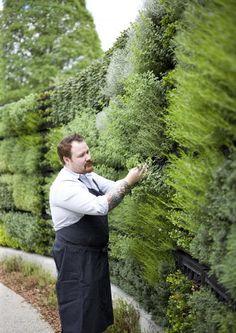 Edible Garden, the Atlanta Botanical Garden. A garden wall of fresh herbs with an outdoor kitchen where chefs host cooking classes. An herb wall - a dream!