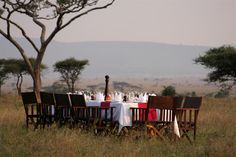 Dinner on the Serengeti