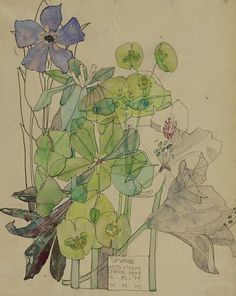 Charles Rennie Mackintosh  Spurge, Withyham  1909  This illustration of flowers, much like his other floral illustrations, presents an art nouveau style with beautiful flowing lines and minimal colour schemes.