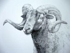 "Eye To Eye by Susan Gutting Pencil ~ 20"" x 16"" Breathtaking."
