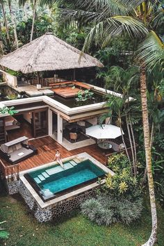 "souhailbog: "" Checked into my jungle villa By Michutravel """