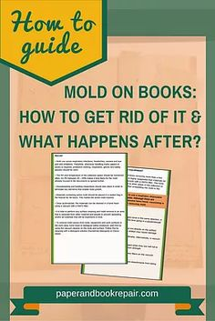 Got a bad case of mold in your books? Get this free eBook that covers mold remediation and mold safety